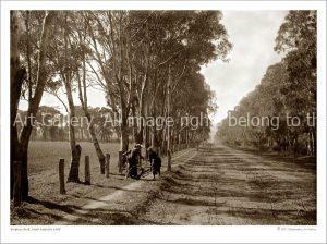 Images of Glenelg