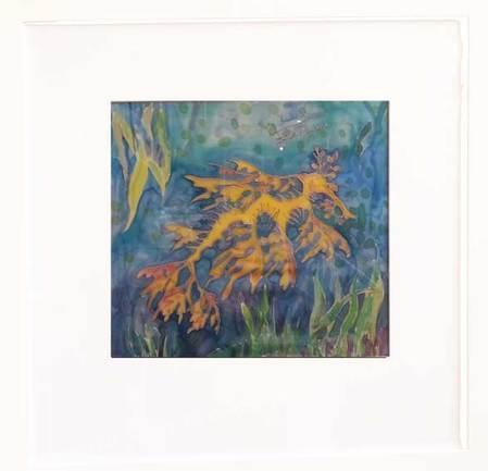 Fiona Heysen Glenelg Art Gallery